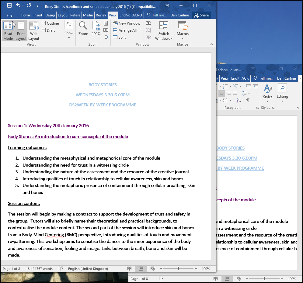 Word - Page View options, multiple windows and multiple page view